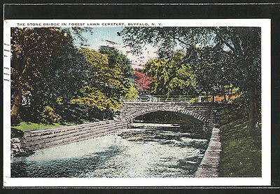 tolle AK Buffalo, NY, The Stone Bridge in Forest Lawn Cemetery 1924