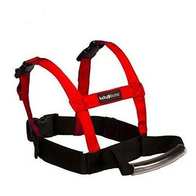 Lucky Bums Grip N Guide Kid's Ski Training Harness, Red