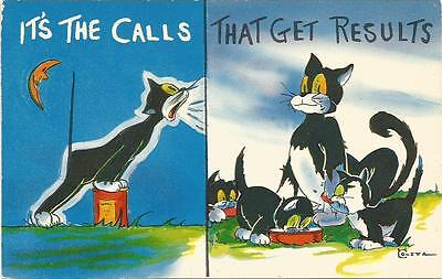 Comic Cat Calls That Get Results Colourpicture Postcard