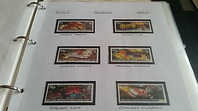 British Indian Ocean Territory 2002 Sg 276-281 Sea Slugs Mnh