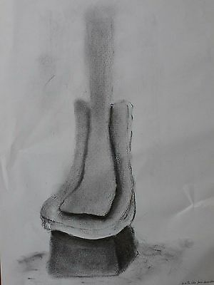 David Nash, original charcoal drawing, land artist (Richard Long/Goldsworthy)