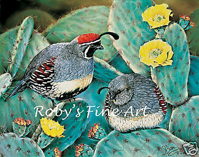 """Gambel's Quail Art Print """"Prickly Pair"""" 5x7 Giclee by Realism Artist Roby Baer"""