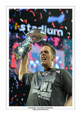 New England Patriots Super Bowl Li 51 Winners A4 Print Photo Tom Brady 4