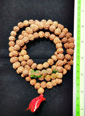 9722-Natural Dry Seed 108 Bead Sacred Meditation Chain Amulet Thai Lp Pern