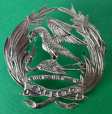 SOUTH AFRICA ARMY FIRST CITY SCOTTISH SCOTLAND BIRD AFRICAN metal CAP BADGE #1