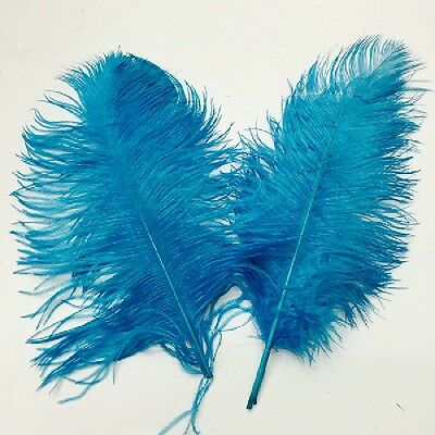 Hot 10pcs Wedding  birthday party Natural ostrich feathers 6-8inch/15-20cm Bulk