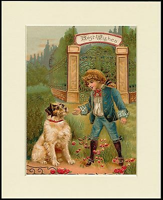 Jack Russell Wire Fox Terrier And Boy Old Style Dog Print Mounted Ready To Frame