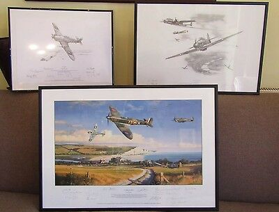 Battle Of Britain A Summer For Heroes Nicolas Trudgian +14 Signed Veteran Proof