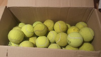 25 old tennis balls- perfect for dogs/ dog toy
