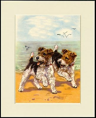 Wire Fox Terrier Two Dogs On A Beach Charming Dog Print Mounted Ready To Frame