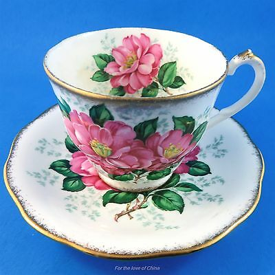 Pretty Pink Queen Anne Camellia Cup and Saucer