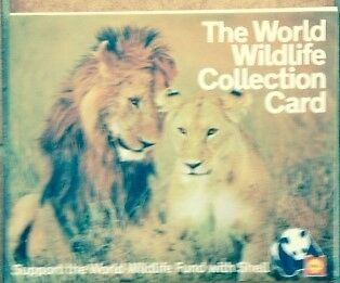 World Wildlife Collection Card with 3D wildlife cards