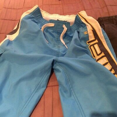 boys animal shorts