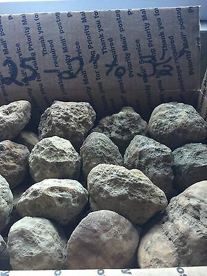 "Box Of Kentucky Geodes:25-2"" To 3 1/2"""