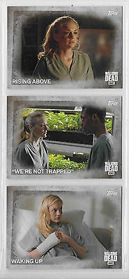3 2016 Topps AMC Walking Dead Collector Cards #19,20,21