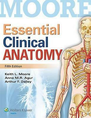 NEW Essential Clinical Anatomy By Moore Paperback Free Shipping