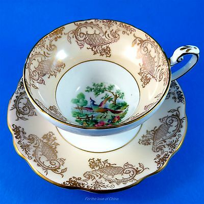 Peach and Gold Border with Exotic Bird Center Foley Tea Cup and Saucer Set