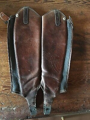 Ariat Crowne Pro Chaps - Size  XSM - Brown Calf Skin leather  RRP $199+