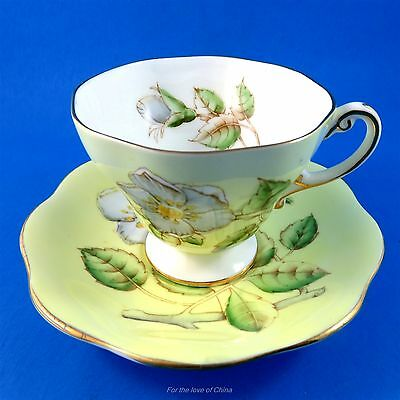 Pretty White Blossom on Yellow Background Foley Tea Cup and Saucer Set