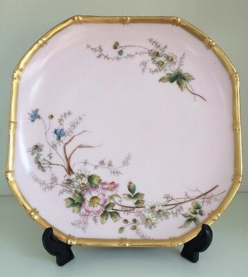 Vintage Beautiful Gold Edged Plate