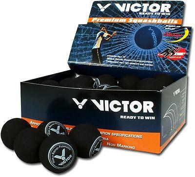 VICTOR SQUASHBALL 36er Display Rot medium Spielball des DSQV Indoor Sport
