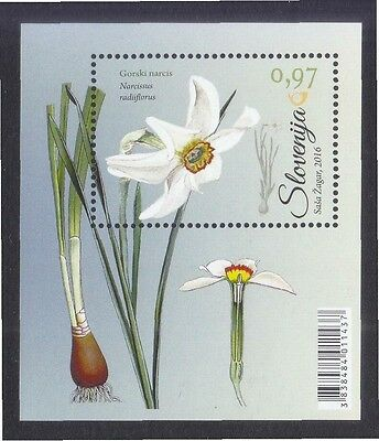 Slovenia 2016 Narcissus Flower Souvenir Sheet Of 1 Stamp In Mint Mnh Unused