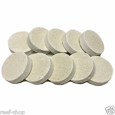 10 Reef Frag Discs Cured for Live Coral Propagation FREE USA SHIPPING!