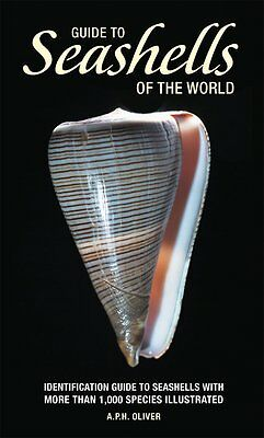 Guide to Seashells of the World NEW BOOK Identification Manual Collection ID NEW