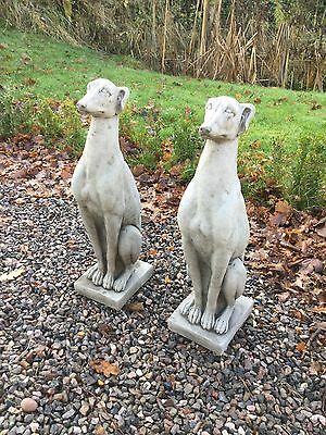 Pair Of Concrete Stone Whippet Dogs Garden Ornaments Statues