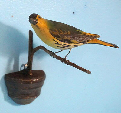 Antique Black Forest Swiss Wood Carved Perched Bird Green Finch GlassEyes Brienz