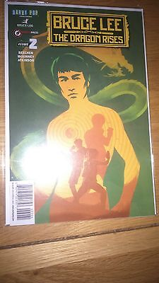 Bruce Lee The Dragon Rises Issue 2