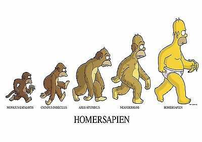 Homer - A4 Glossy Poster - TV Film Movie Free Shipping #710