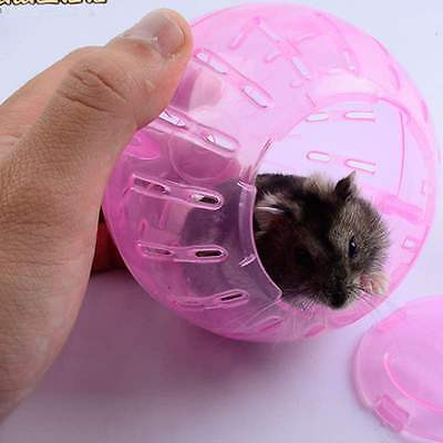 Fashion Pet Small Mini Ball Playing Toy Hamster Gerbil Rat Plastic Exercise Tool
