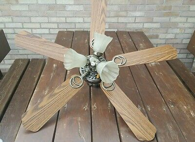 """Ceiling Fan 42"""" Blades And Light"""