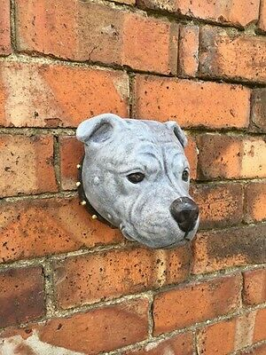Staffordshire Bull Terrier Head Wall Plaque - Garden Ornament Latex Mould (WP2L)