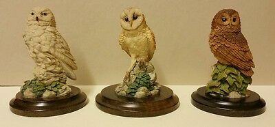 1989 Country Artists Owls collection on wooden plinths