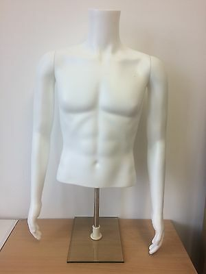 Male Headless Torso with Arms
