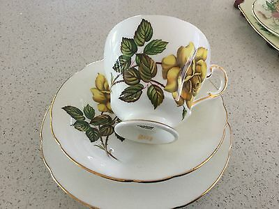 PARAGON BONE CHINA TRIO by appoint. Her Majesty No N183 Made in England