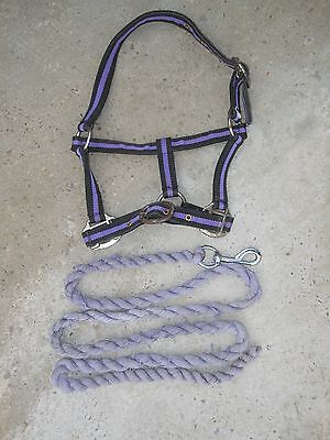 1 Pony / 1 Full Size Headcollars With Lead Reins