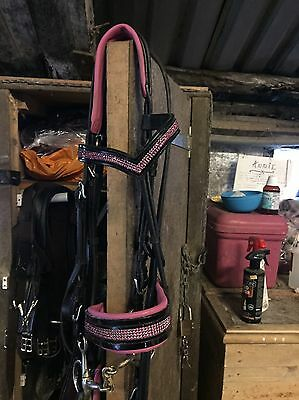 Patent Leather Bridle With Pink Padding & Pink Diamanté FULL
