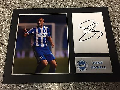 SIGNED BRIGHTON & HOVE ALBION STEVE SIDWELL MOUNT Championship