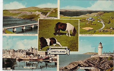 Multiview, SHETLAND ISLANDS, Scotland