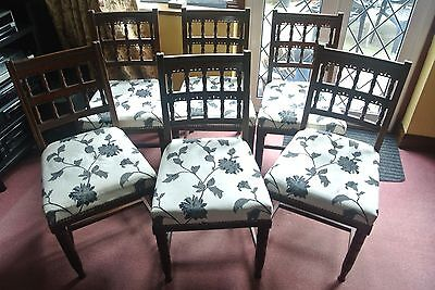 Set of Six Edwardian Mahogany Dinind Chairs - Local delivery available