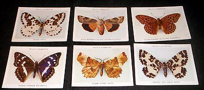 6 Large Wills Cigarette Cards Butterflies And Moths