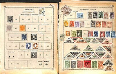 v201-Portugal Colonies- Mint & Used