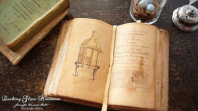 Beehive/Apiology Open Book with real paper pages Dollhouse 1/12 Scale