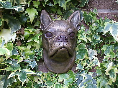 Bronzed Stone  Boston Terrier Dogs Head  Sculpture