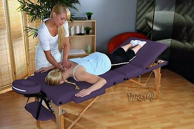 Portable Massage Table Reiki Couch 3-section purple