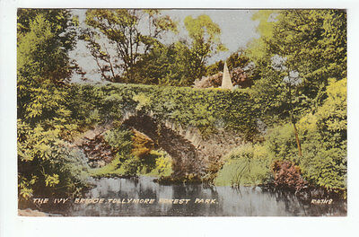 The Ivy Bridge Tollymore Forest Park Newcastle Down 1955 Valentines R4748 Old PC