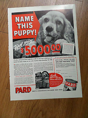1938 Pard Dog Food Ad Name this Cocker Spaniel Male Puppy